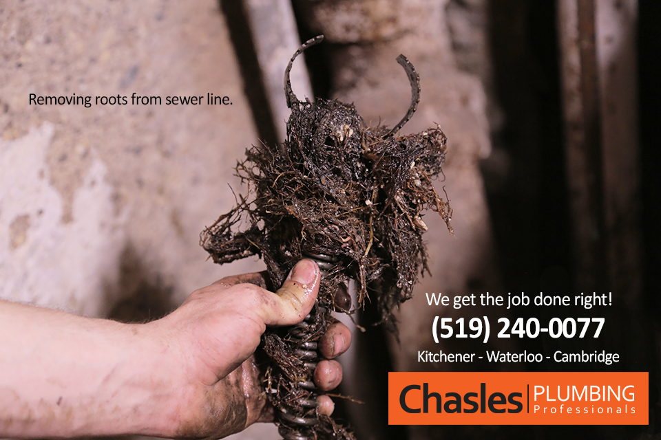 Clearing Sewer Pipes