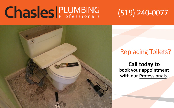 Toilet Replacement Chasles Plumbing