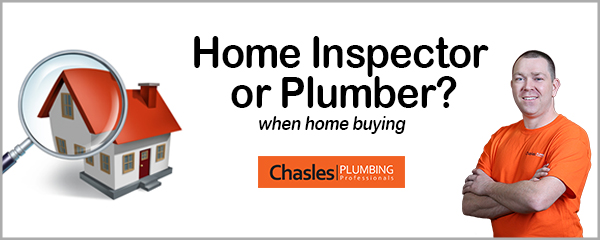 Home inspector or plumber